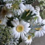 [bouquet]bouquet-13.jpg